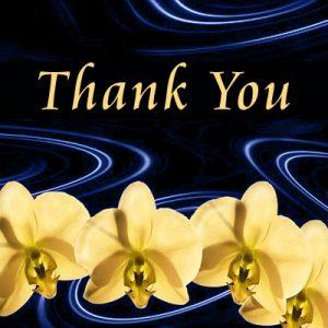 Grazie per la tua donazione a The Word Foundation